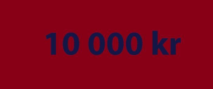 10 000 kr skattepliktige gevinster på norske kasinoer